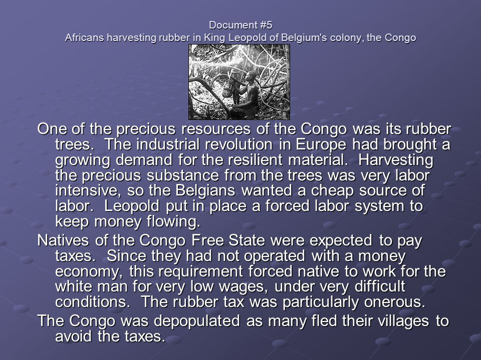 Document #5 Africans harvesting rubber in King Leopold of Belgium s colony, the Congo