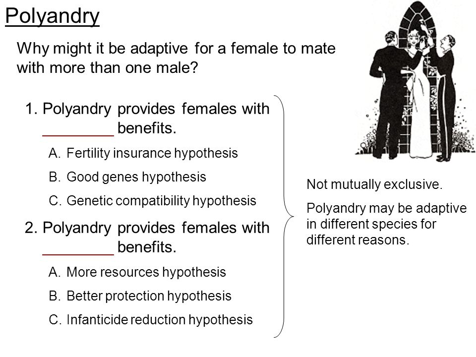 Polyandry Why might it be adaptive for a female to mate with more than one male Polyandry provides females with ________ benefits.