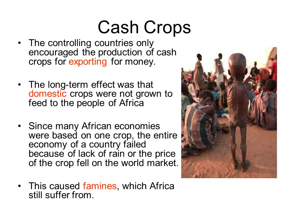Cash Crops The controlling countries only encouraged the production of cash crops for exporting for money.
