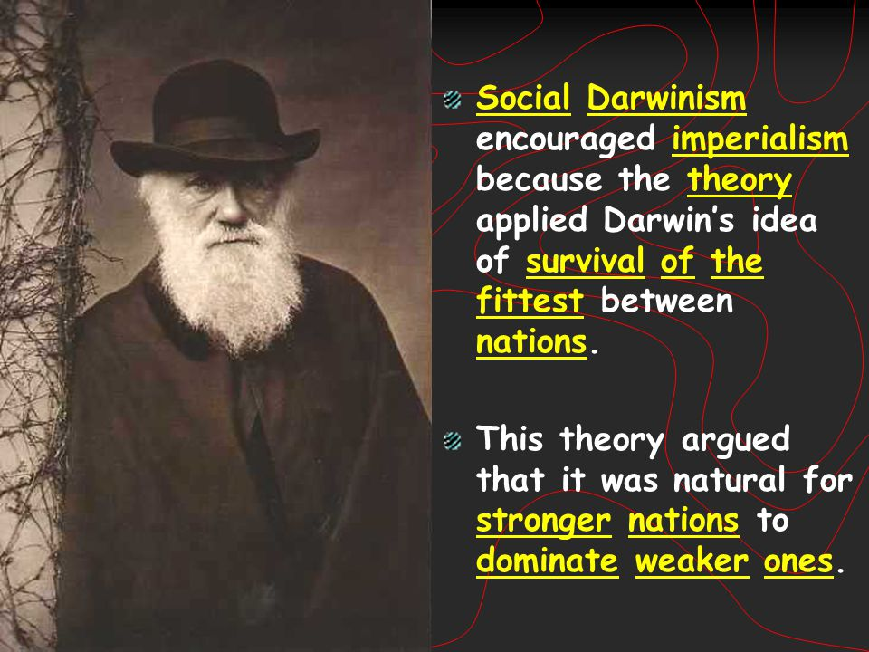 Social Darwinism encouraged imperialism because the theory applied Darwin's idea of survival of the fittest between nations.