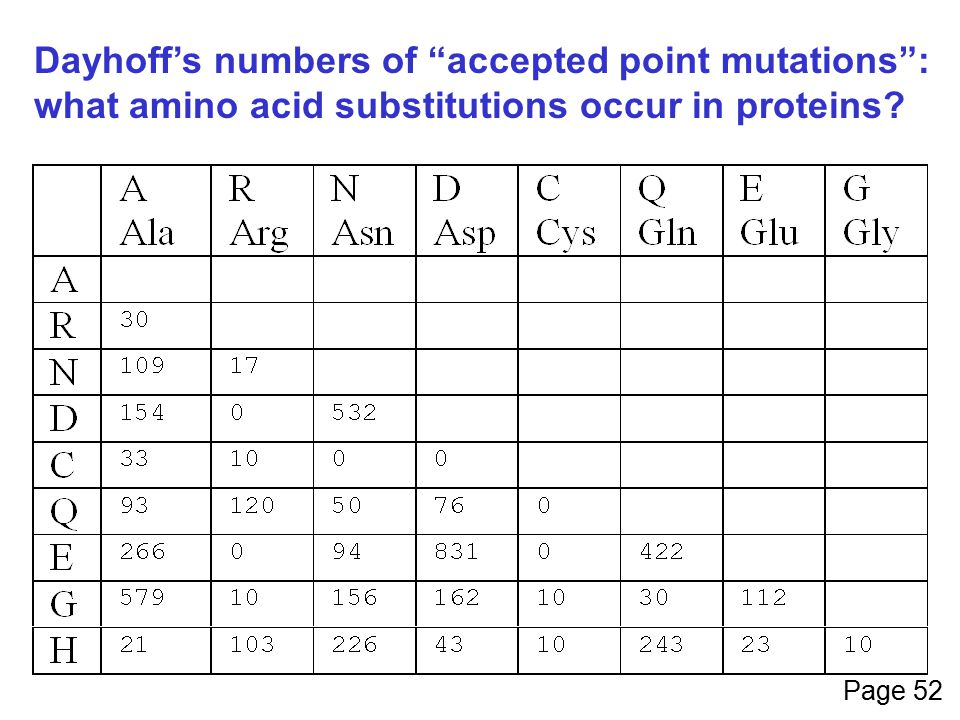 Dayhoff's numbers of accepted point mutations :