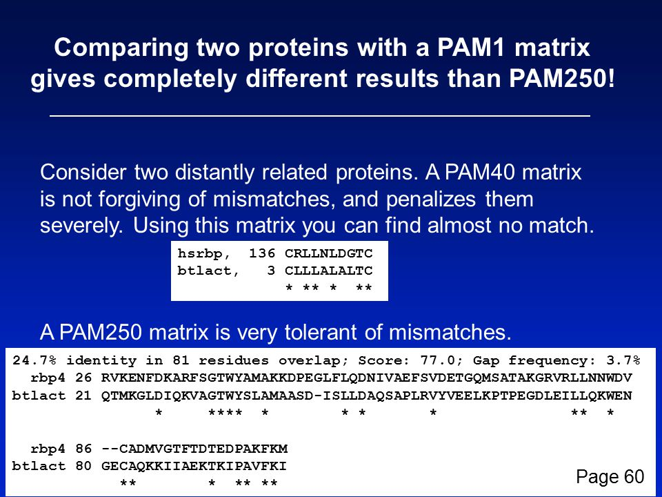 Comparing two proteins with a PAM1 matrix