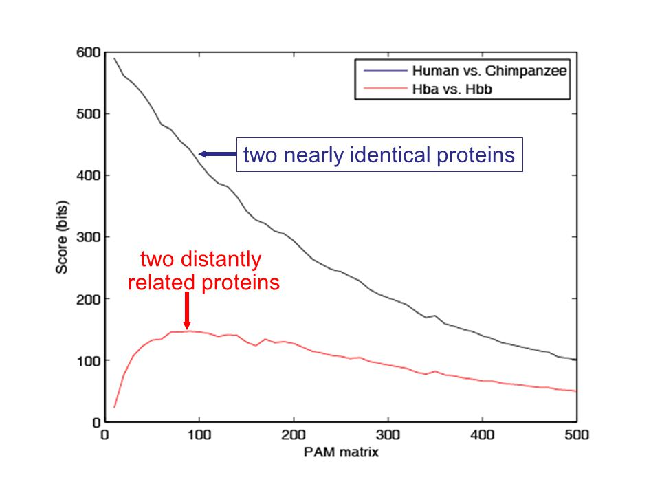 two nearly identical proteins