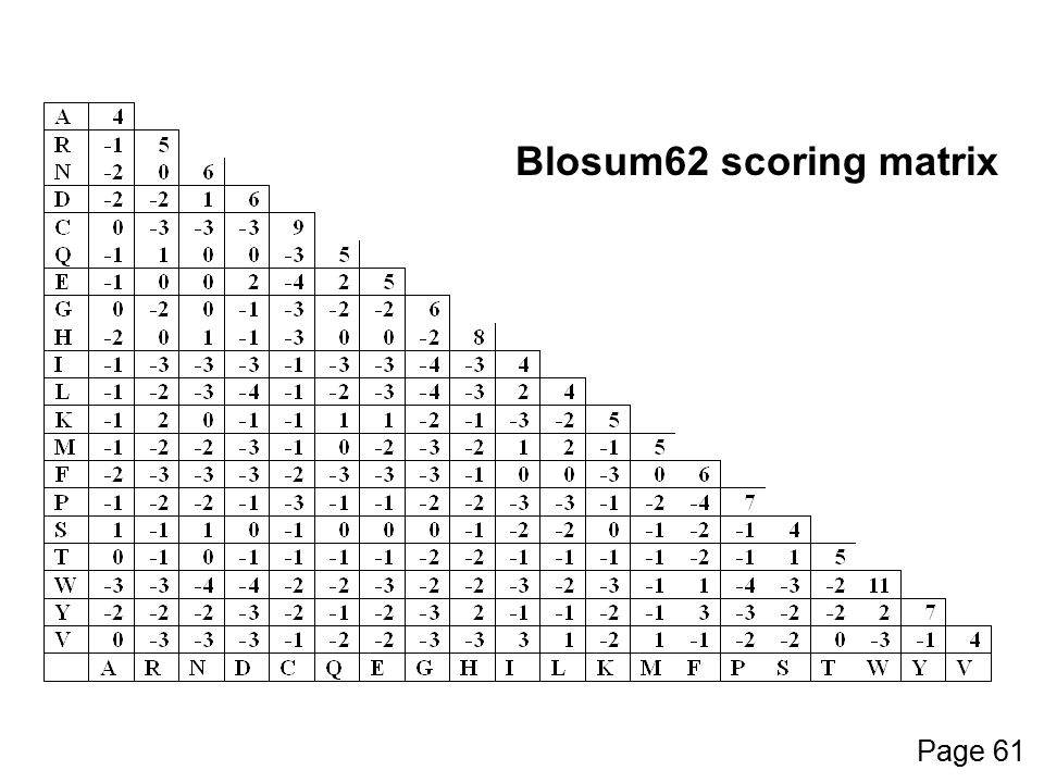 Blosum62 scoring matrix Page 61