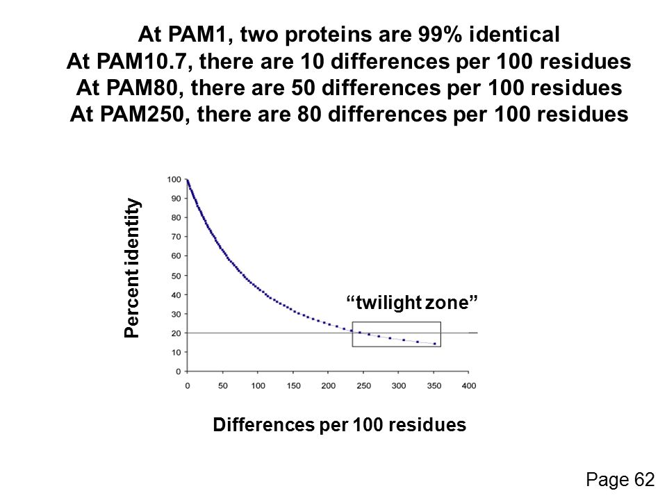 At PAM1, two proteins are 99% identical