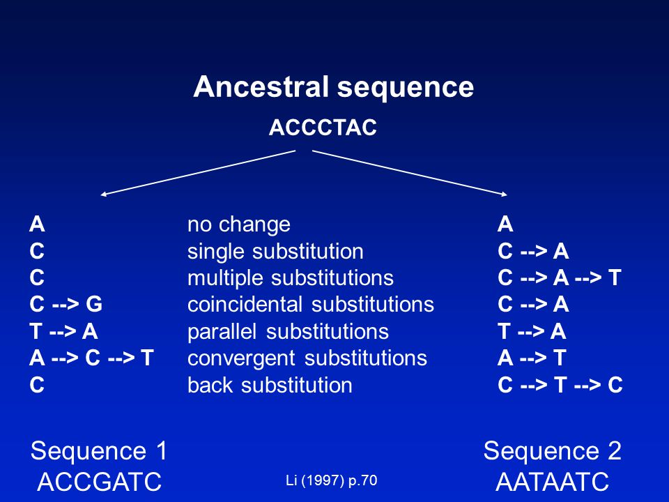 Ancestral sequence Sequence 1 ACCGATC Sequence 2 AATAATC ACCCTAC