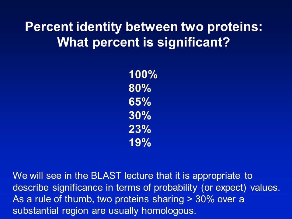 Percent identity between two proteins: What percent is significant