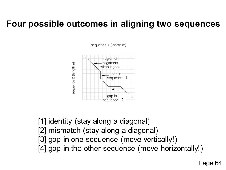 Four possible outcomes in aligning two sequences