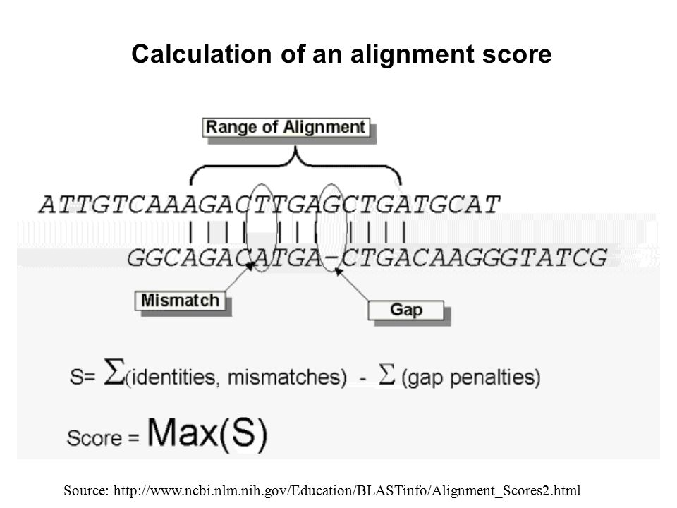 Calculation of an alignment score
