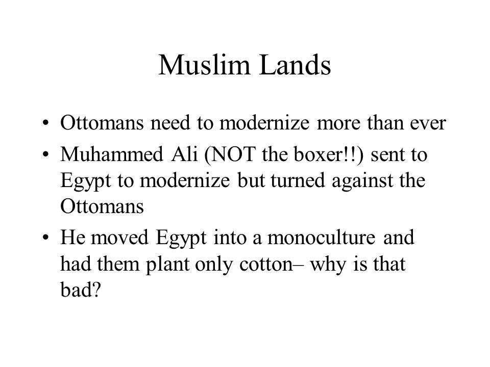 Muslim Lands Ottomans need to modernize more than ever