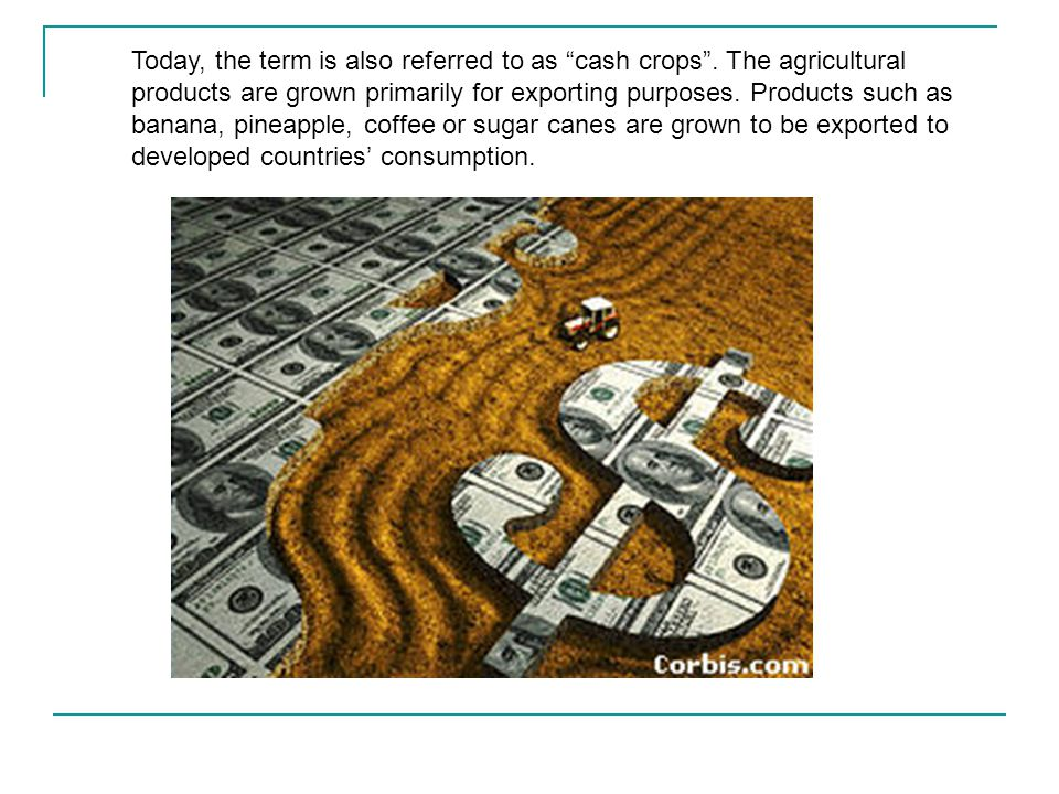 Today, the term is also referred to as cash crops