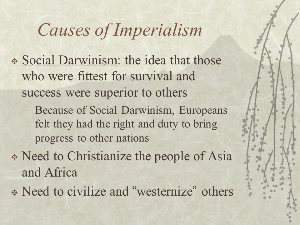 Causes of Imperialism Social Darwinism: the idea that those who were fittest for survival and success were superior to others.