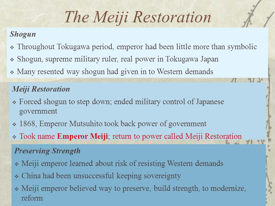 The Meiji Restoration Shogun