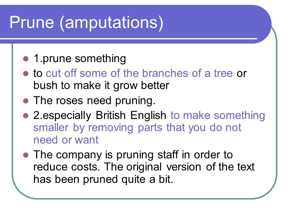 Prune (amputations) 1.prune something