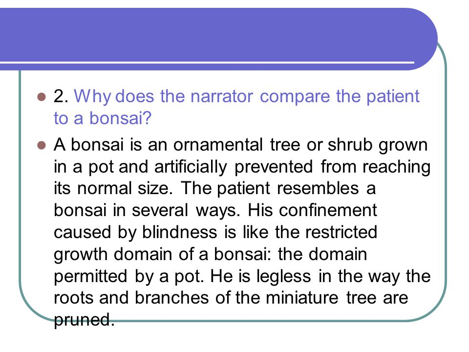 2. Why does the narrator compare the patient to a bonsai