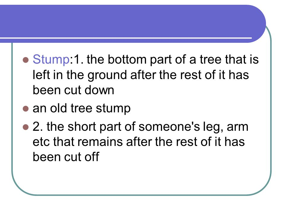 Stump:1. the bottom part of a tree that is left in the ground after the rest of it has been cut down