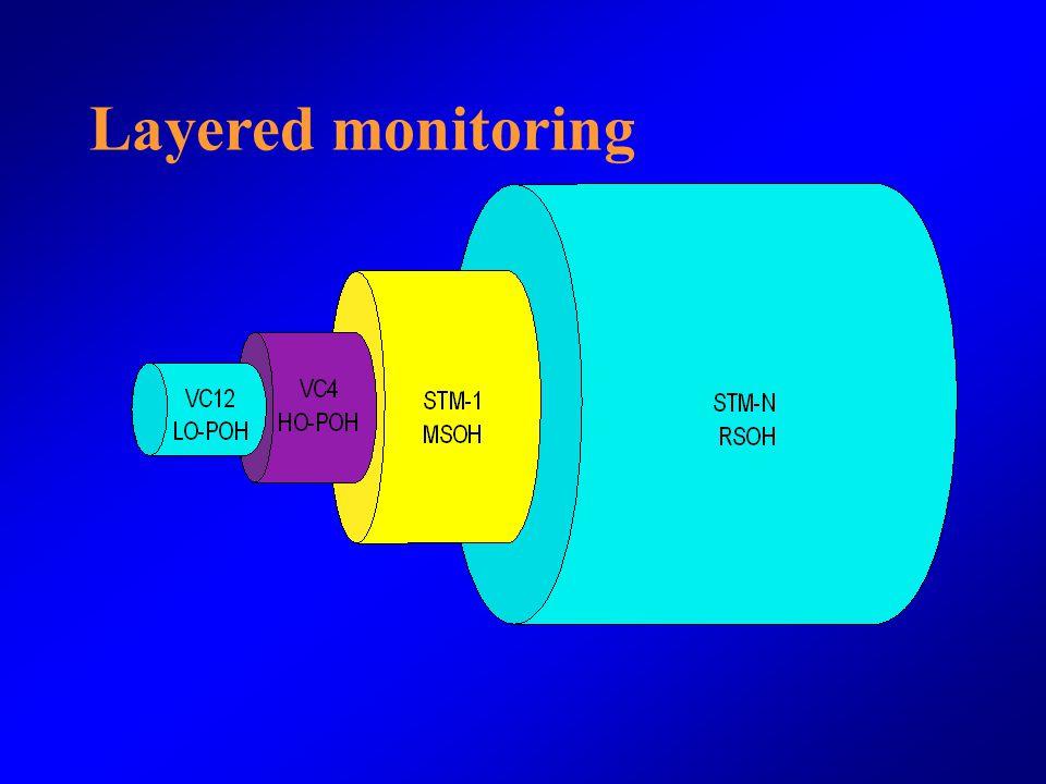 Layered monitoring