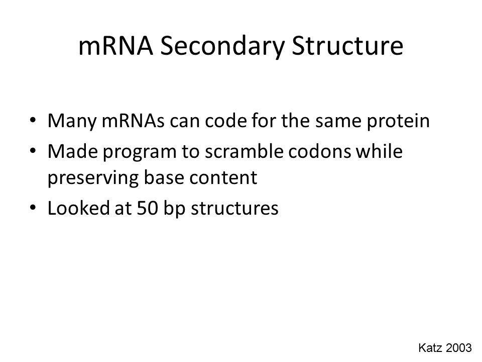 mRNA Secondary Structure