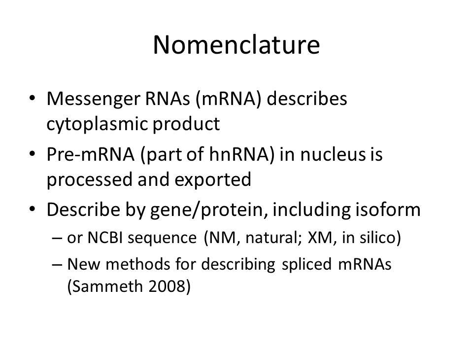 Nomenclature Messenger RNAs (mRNA) describes cytoplasmic product