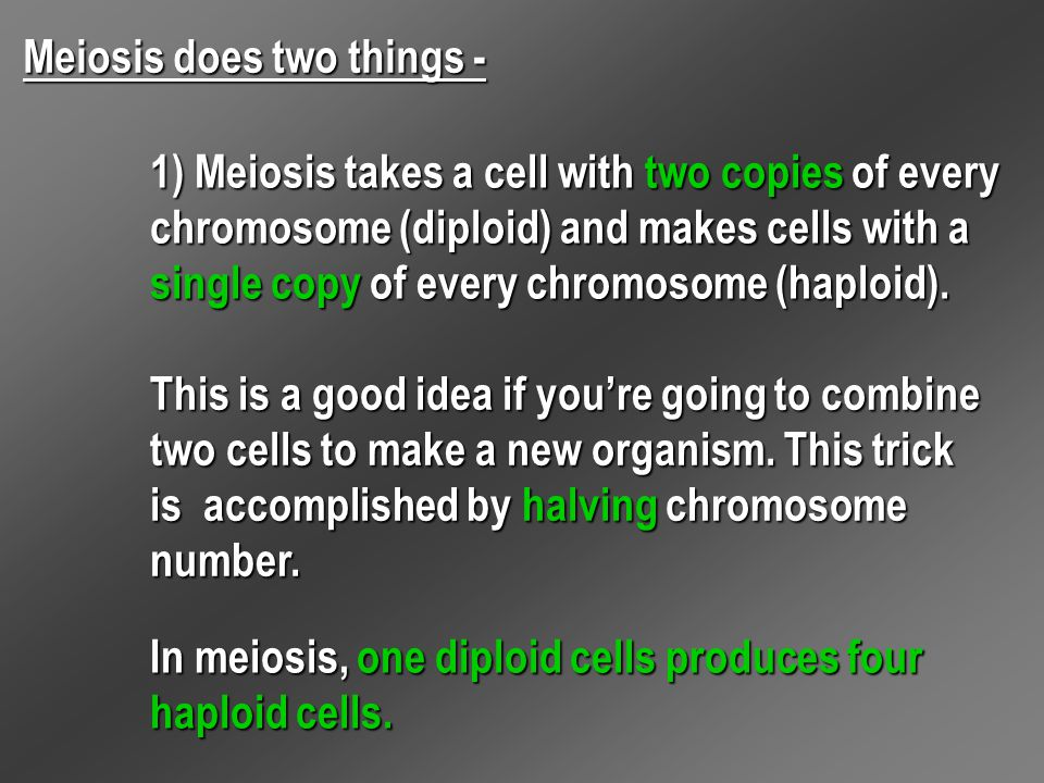 Meiosis does two things -