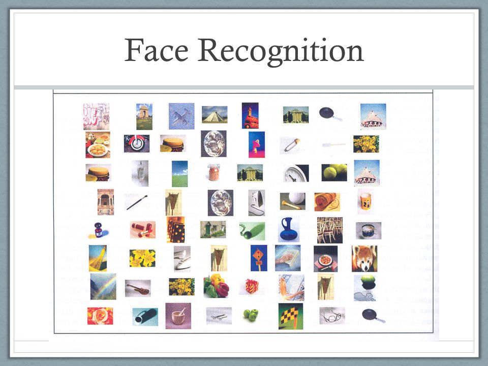 Face Recognition Inverted faces are much harder to identify as compared with other objects that are inverted.