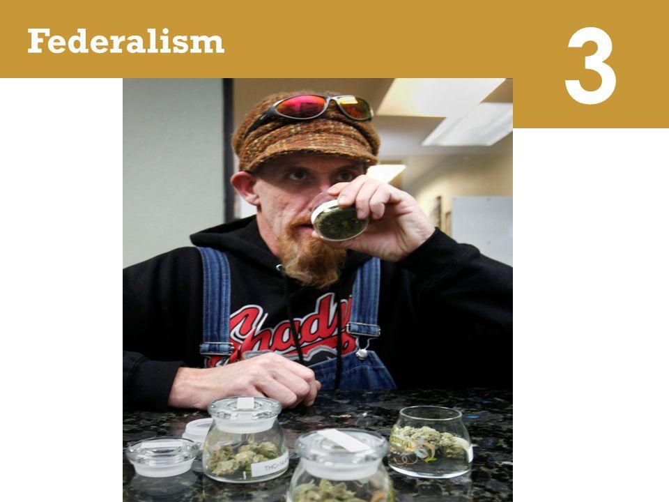 3 Federalism.