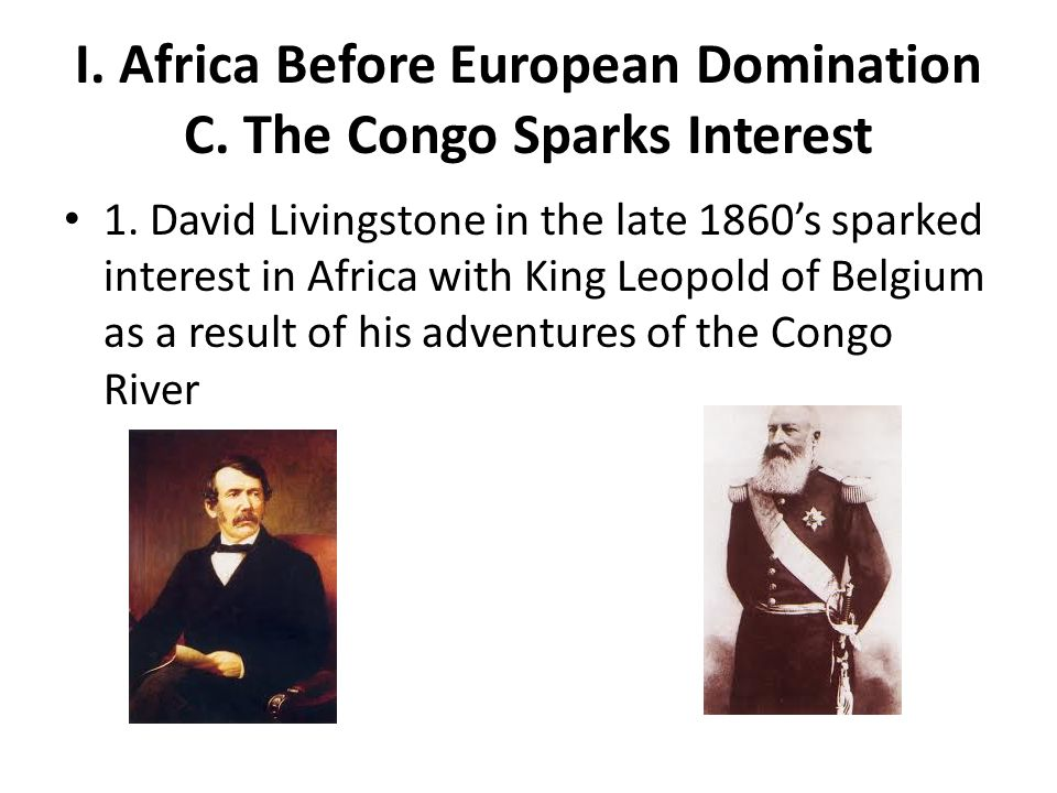 I. Africa Before European Domination C. The Congo Sparks Interest