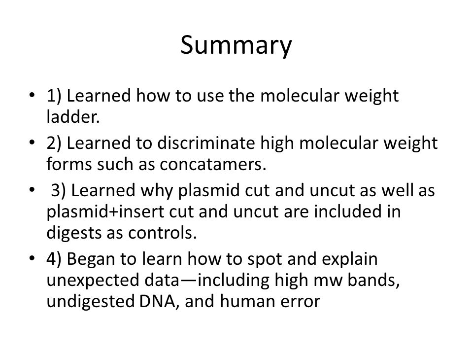 Summary 1) Learned how to use the molecular weight ladder.