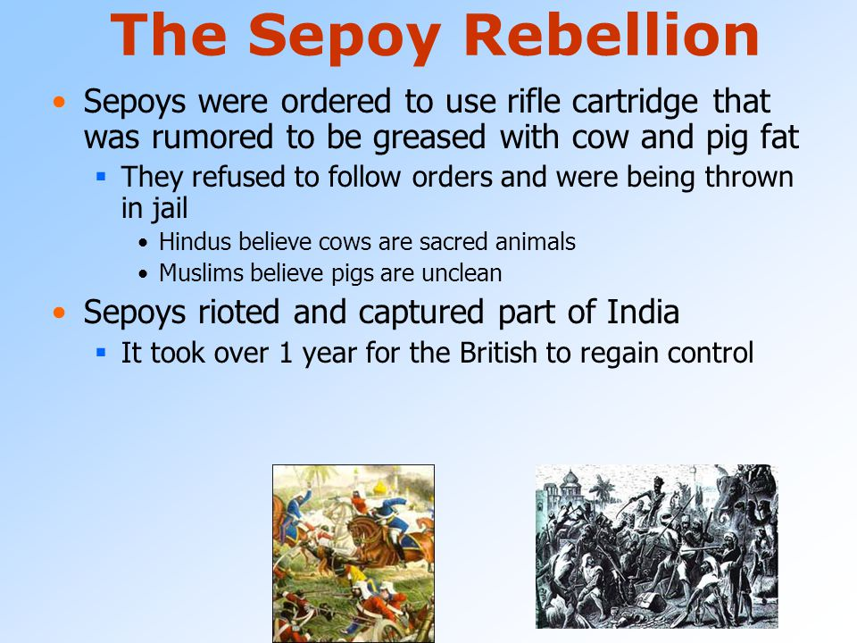 The Sepoy Rebellion Sepoys were ordered to use rifle cartridge that was rumored to be greased with cow and pig fat.