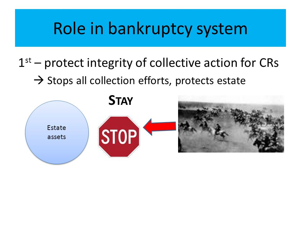 Role in bankruptcy system