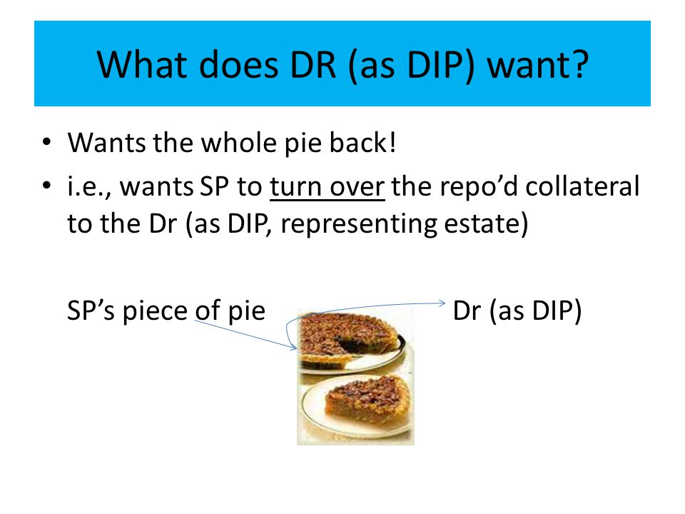 What does DR (as DIP) want