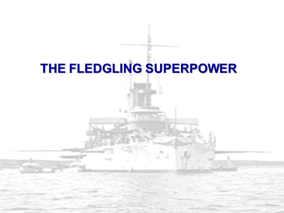 THE FLEDGLING SUPERPOWER