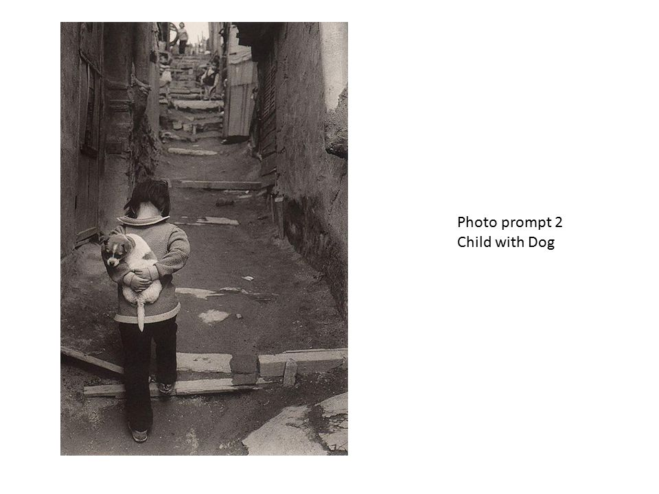 Photo prompt 2 Child with Dog