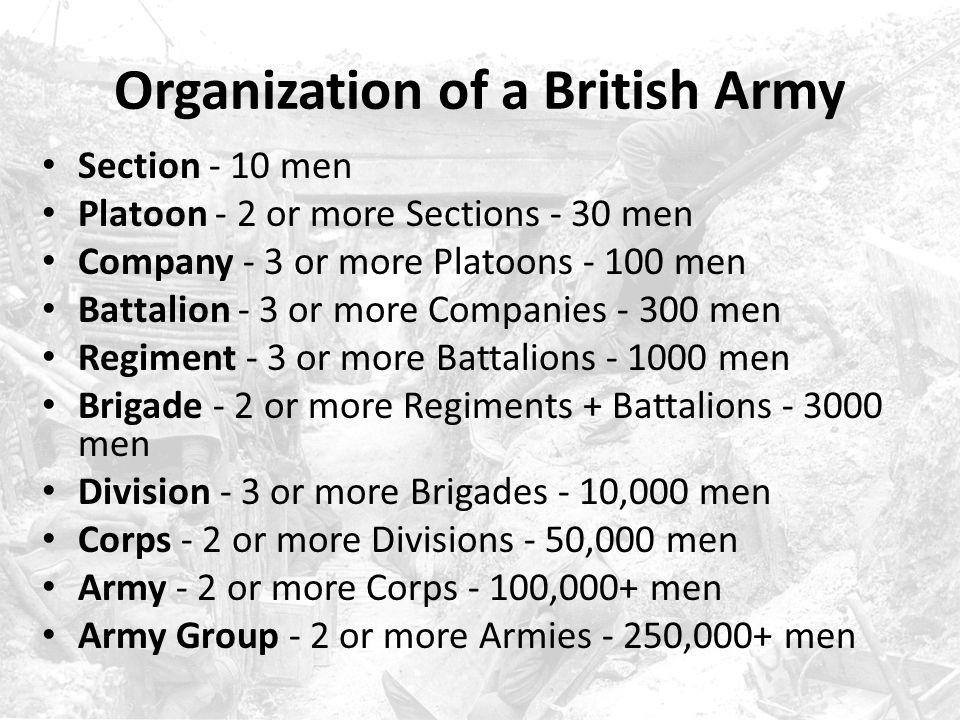 Organization of a British Army