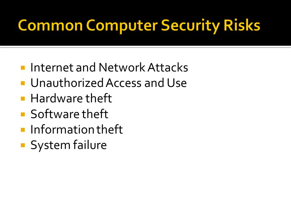 Common Computer Security Risks