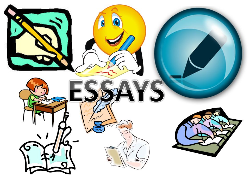 practice ap world essays The developing and writing your ap world history exam essay chapter of this of developing and writing their ap world history exam essays practice exams.