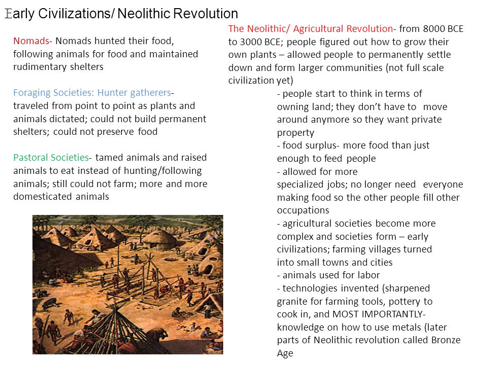 Early Civilizations/ Neolithic Revolution