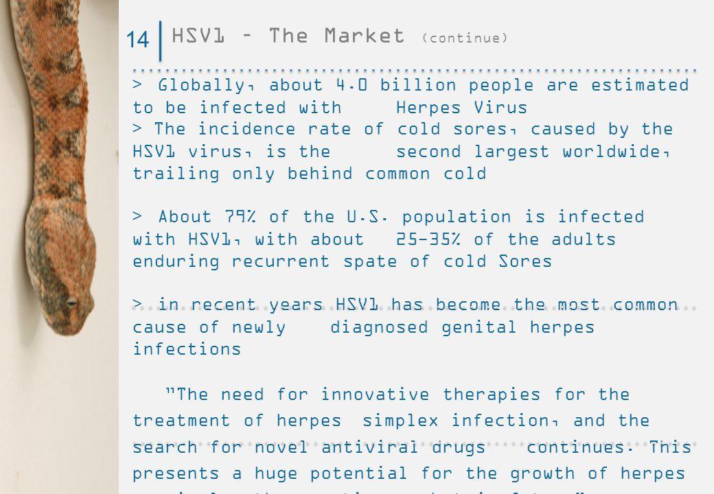 HSV1 – The Market (continue)