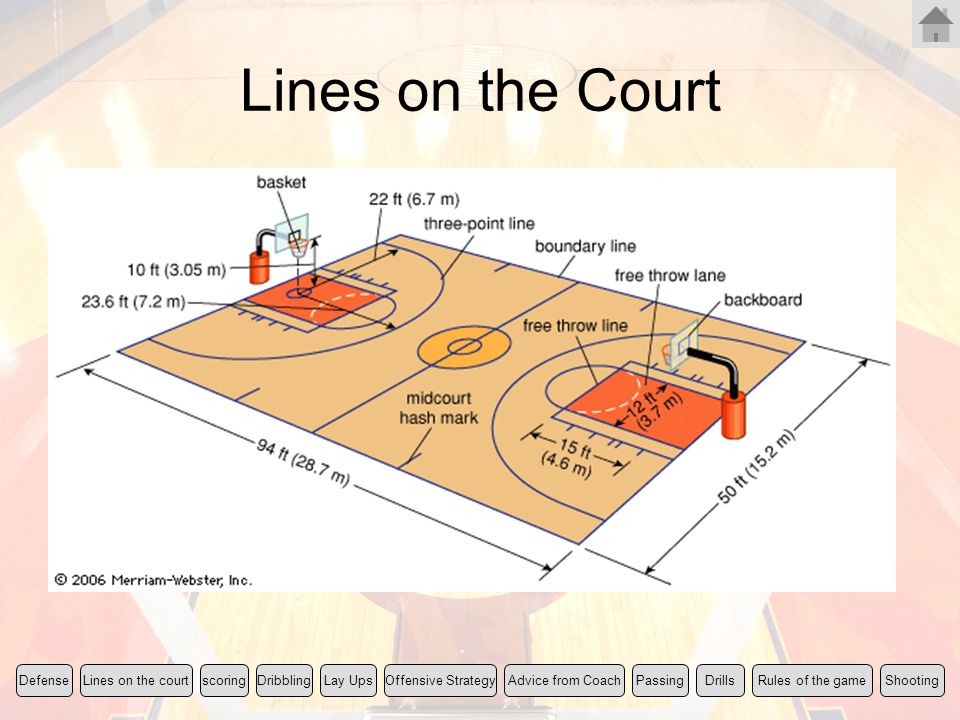 Lines on the Court Rules of the game Lines on the court scoring
