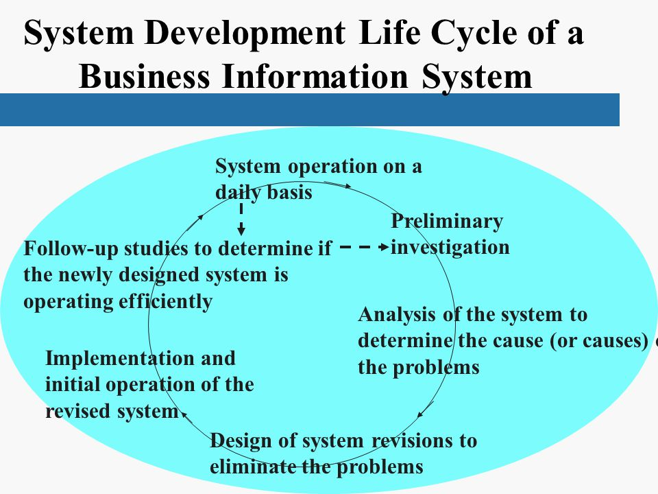 System Development Life Cycle of a Business Information System