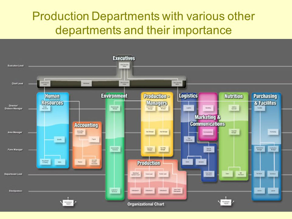 Production Departments with various other departments and their importance