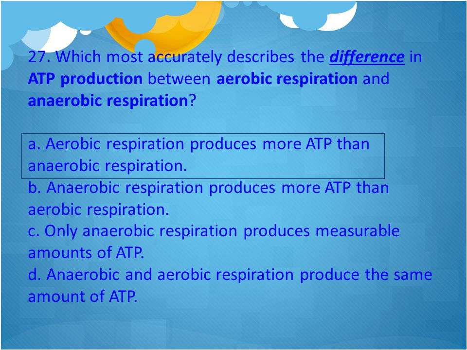 27. Which most accurately describes the difference in ATP production between aerobic respiration and anaerobic respiration