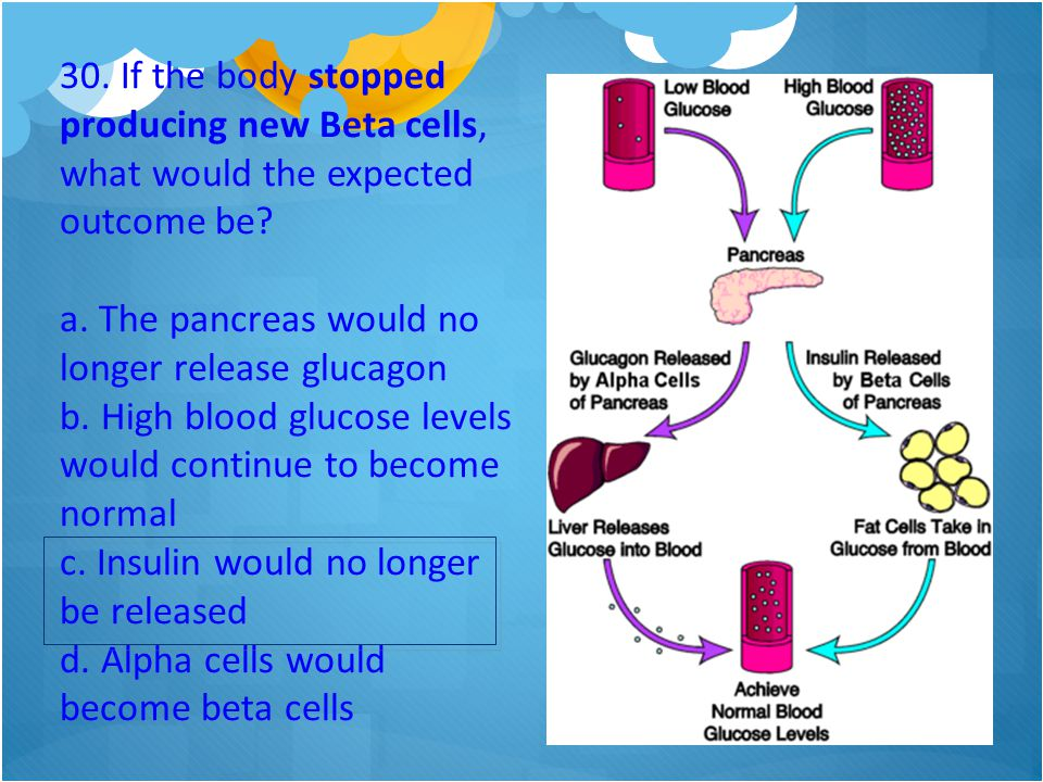 30. If the body stopped producing new Beta cells, what would the expected outcome be