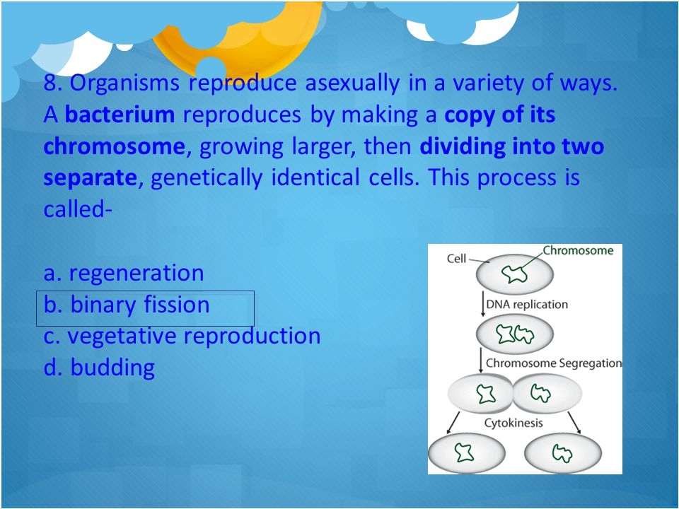 8. Organisms reproduce asexually in a variety of ways