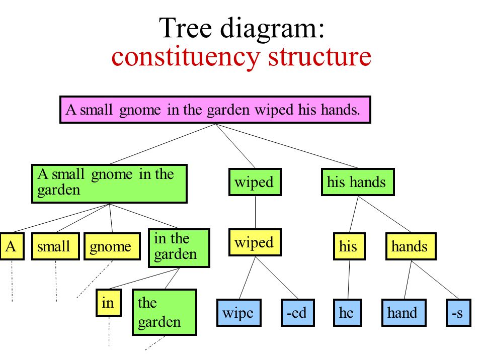 Tree diagram: constituency structure