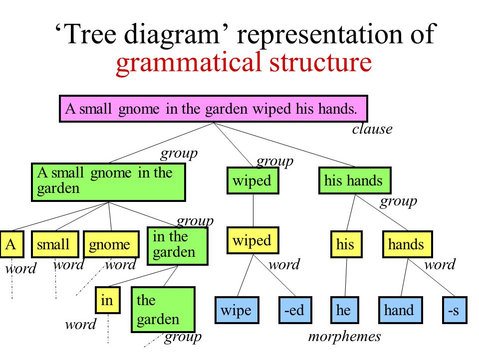 'Tree diagram' representation of grammatical structure