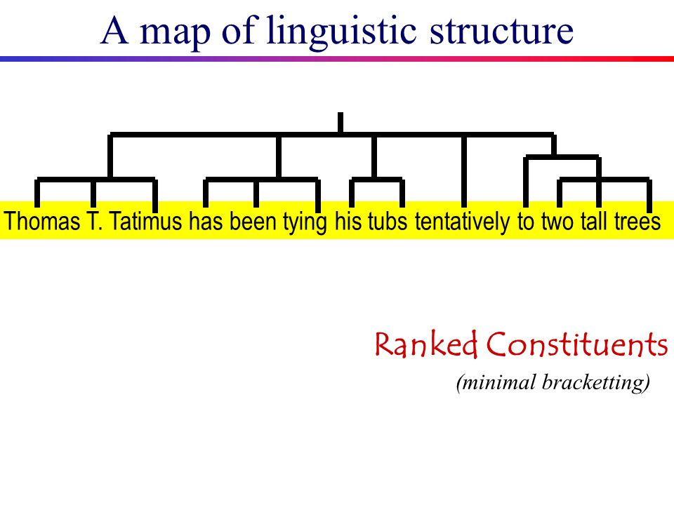 A map of linguistic structure