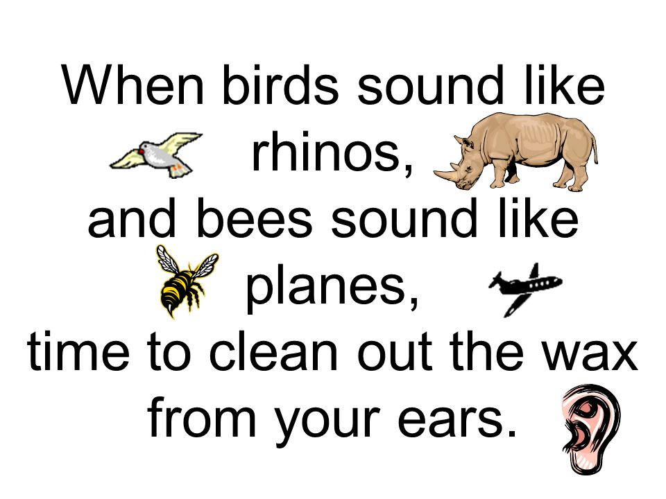 When birds sound like rhinos, and bees sound like planes, time to clean out the wax from your ears.