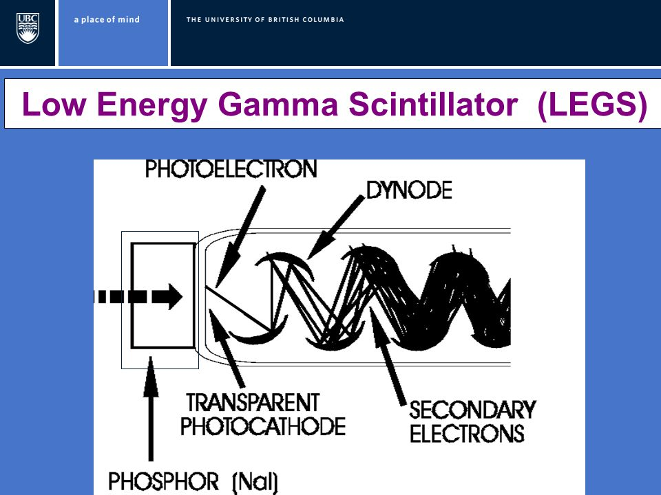 Low Energy Gamma Scintillator (LEGS)