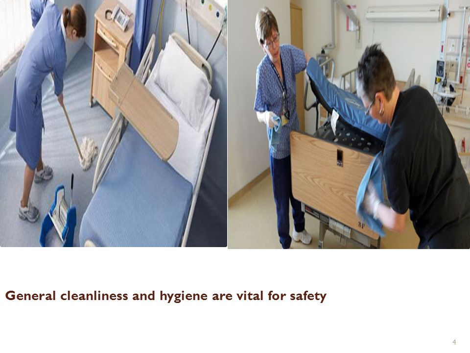 General cleanliness and hygiene are vital for safety